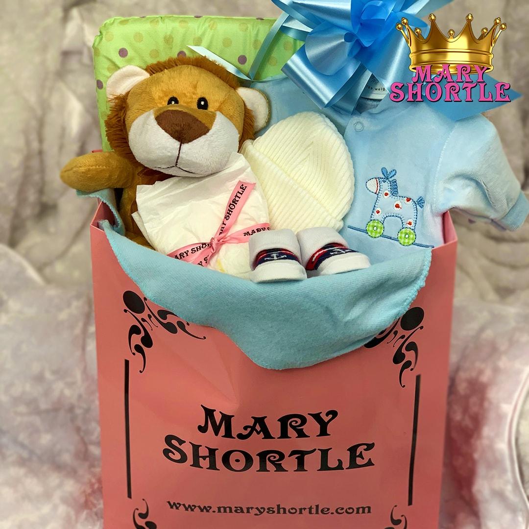 Boys Bag Hamper Mary Shortle