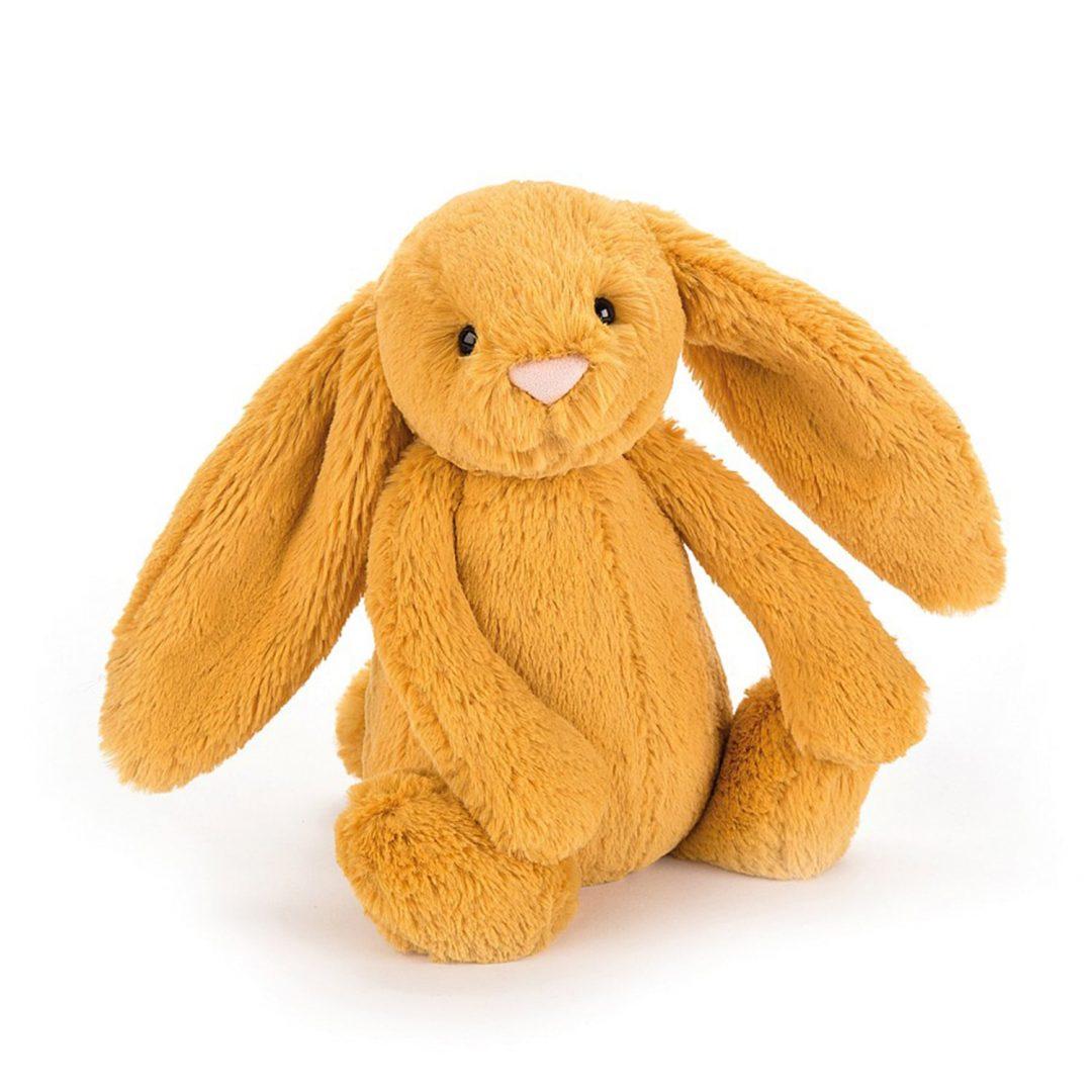Bashful Saffron Bunny Jellycat Teddy Mary Shortle