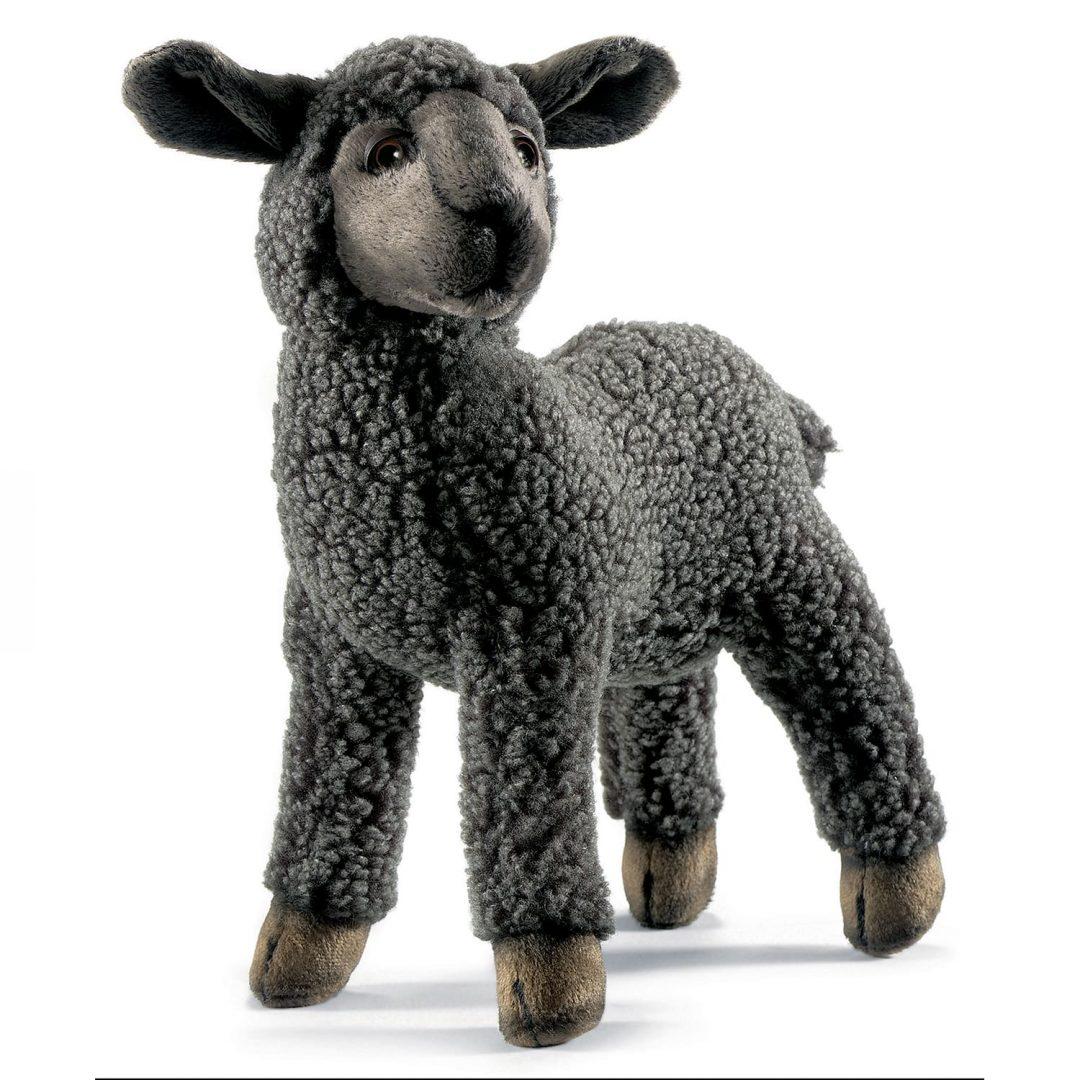 Black Lamb Hansa 3454 Mary Shortle-min (1)