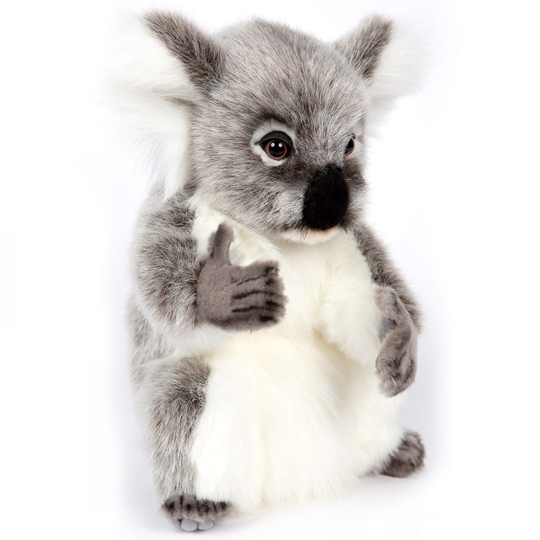 Koala Hansa 7633 Mary Shortle 2-min