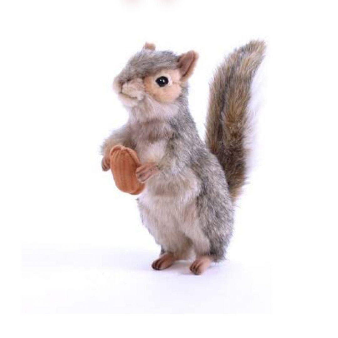 Squirrel 4841-min